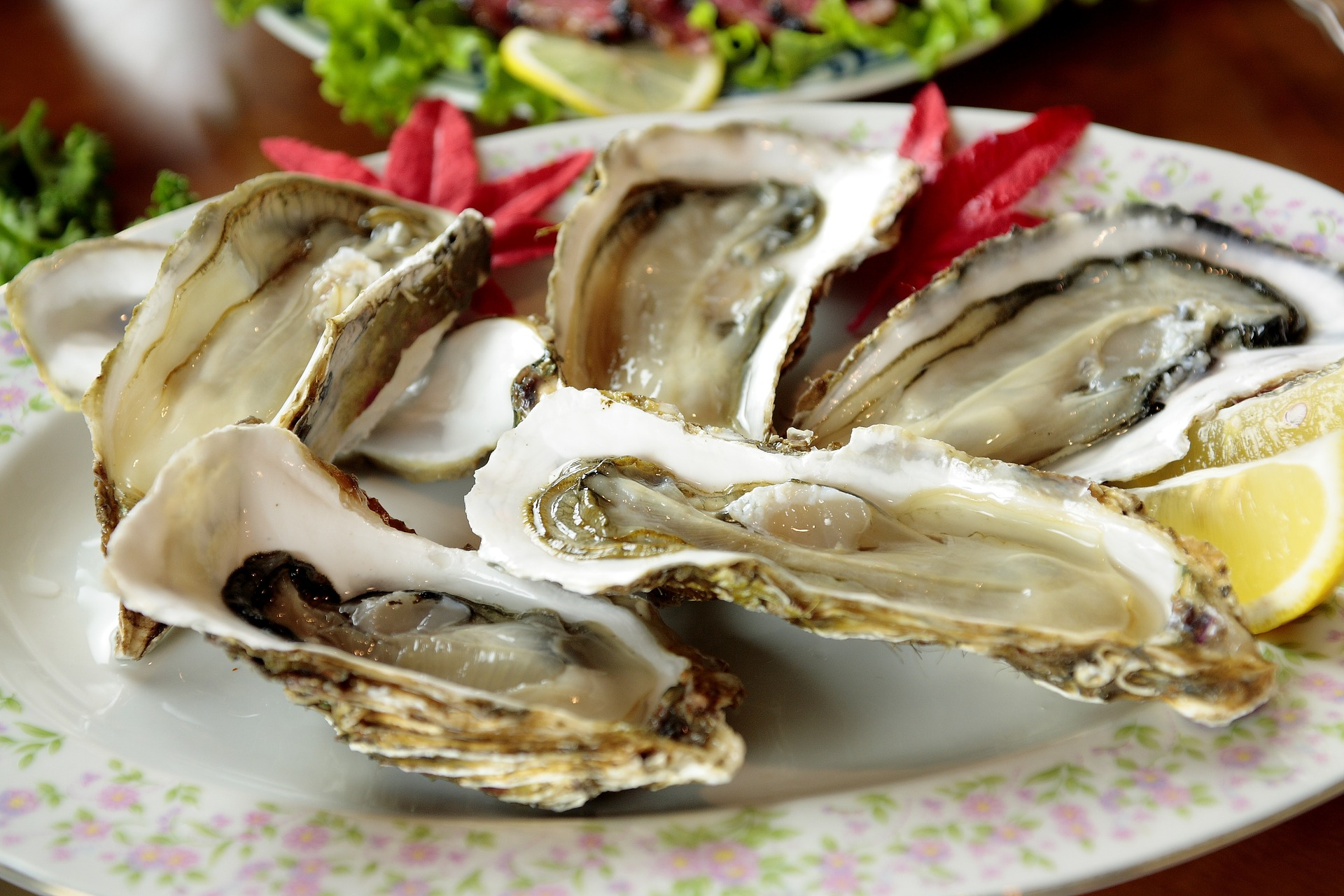 Celebrate National Oyster Day!